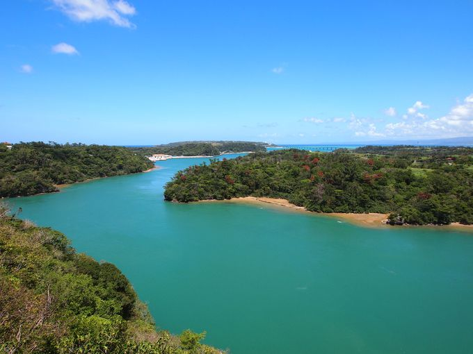 ベスト4:亜熱帯の森と青い海がお見事「ワルミ大橋」