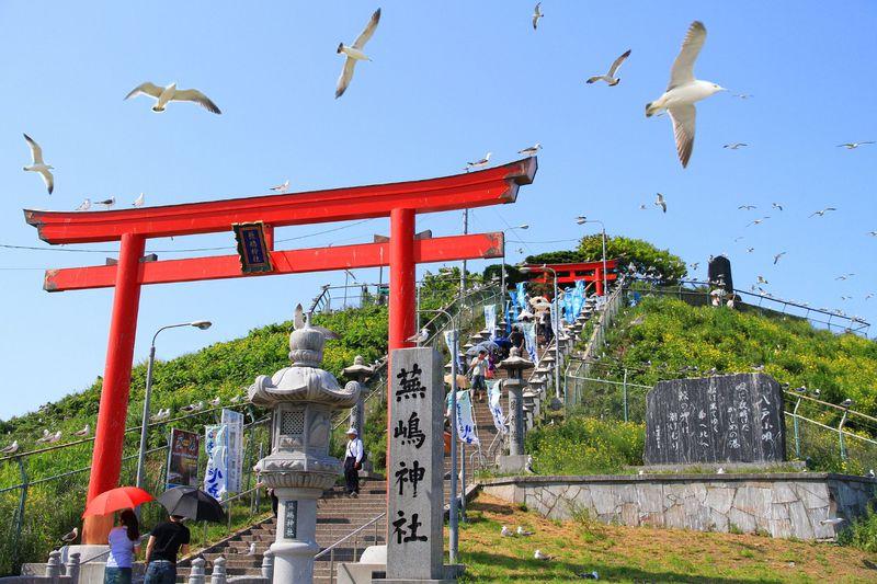 国の天然記念物に指定されている神社 蕪島神社