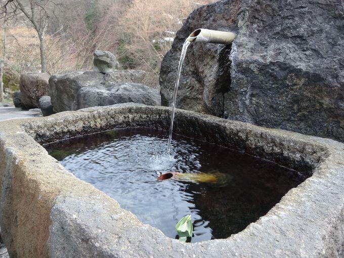 湯上りの一杯も温泉