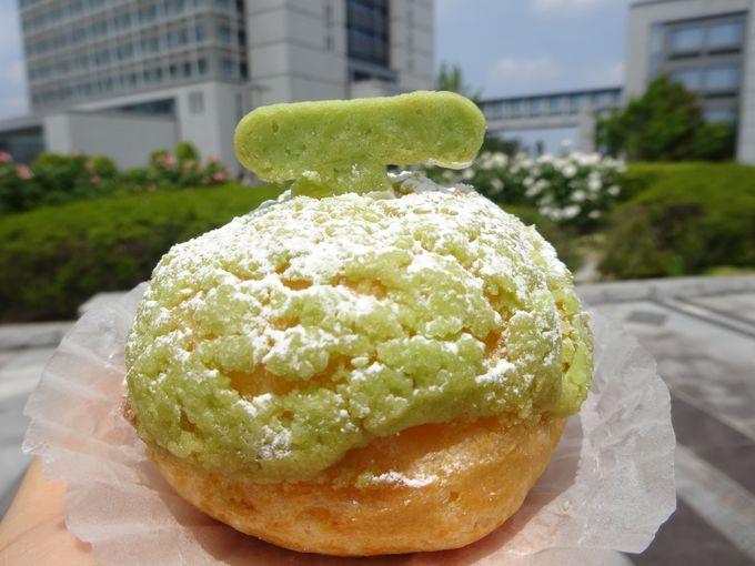 メロン生産日本一!全国を代表する至福のフルーツ「茨城のメロン」