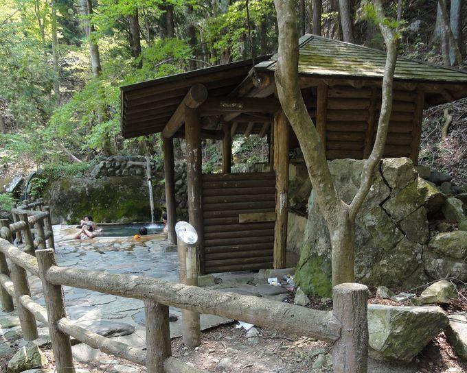森林浴と温泉浴のダブルの効果!!塩原温泉郷の森のいで湯