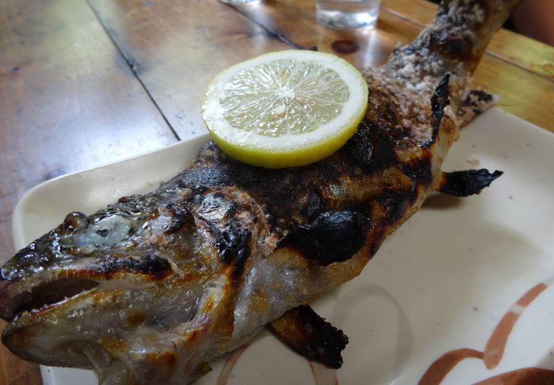 釣った魚をその場で炭火焼にして食す贅沢! 筑波山「仙郷」