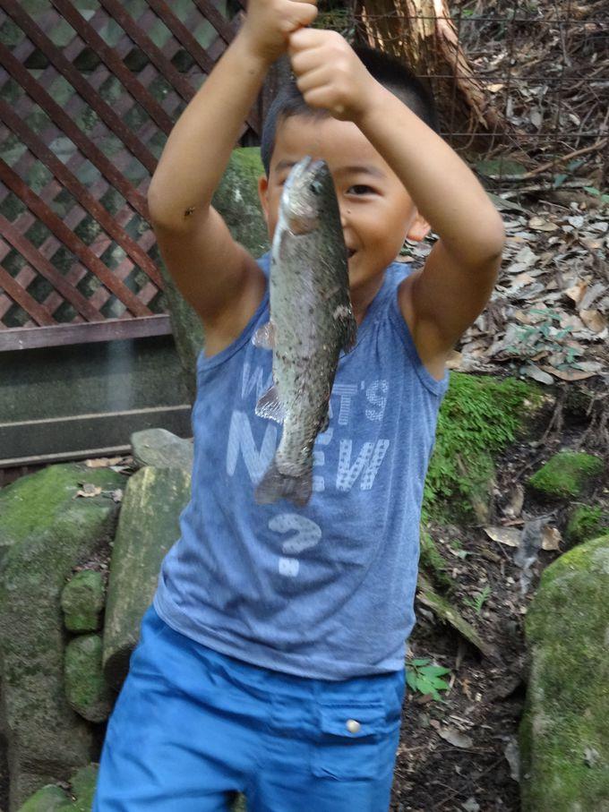 釣りすぎ注意!!おもしろいほどに釣れる