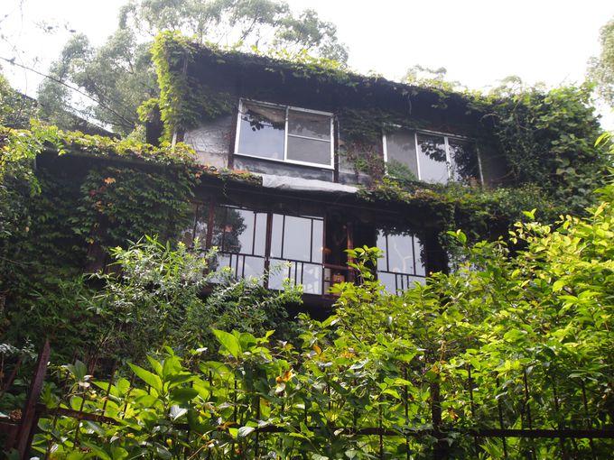 22.尾道観光で外せない「坂道散策・隠れ家カフェ」