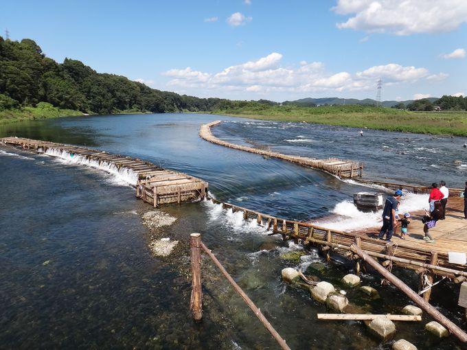 那珂川の夏から秋の風物詩「やな漁」とは