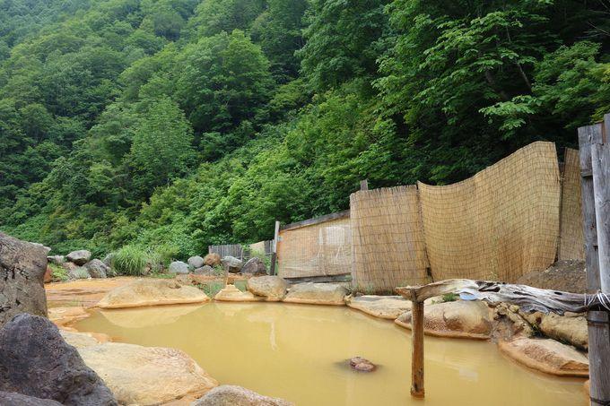 人里離れたブナの原生林を眺めて浸かる秘湯「広河原温泉 間欠泉 湯の華」