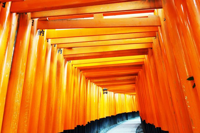 京都駅近くだから便利!!静かなときを過ごす早朝参拝もオススメ