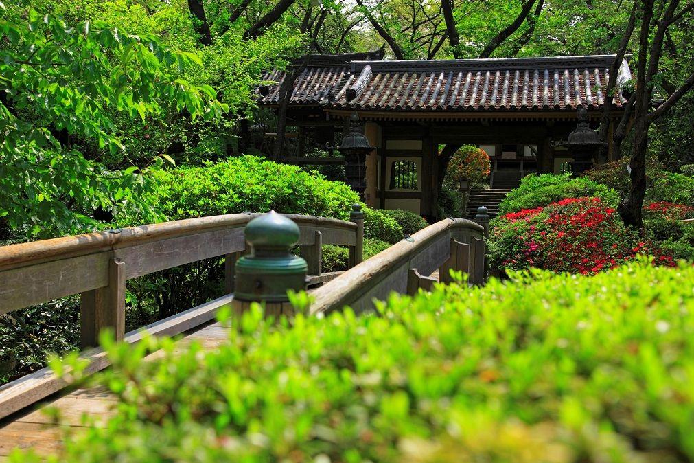 庭園の小道から香る草花の香りを楽しむ「高輪 花香路」