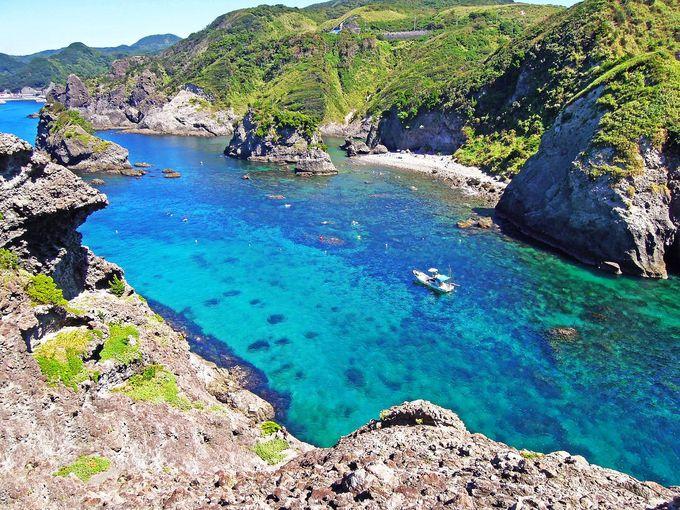伊豆下田のコバルトブルーの海で遊ぶ!大迫力の自然に触れる!!