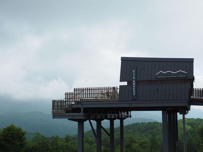 楽してアクセス!!白馬岩岳山頂・標高1,289mの絶景テラス
