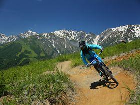 初心者OK!標高差521mの「白馬岩岳MTBパーク」を爽快滑走