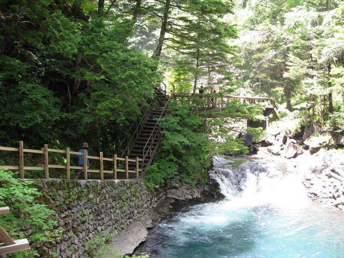 マイナスイオンたっぷり「善五郎の滝」