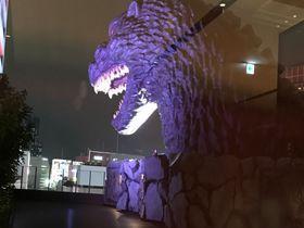 歌舞伎町でゆったり?!ホテルグレイスリー新宿のレディスルーム