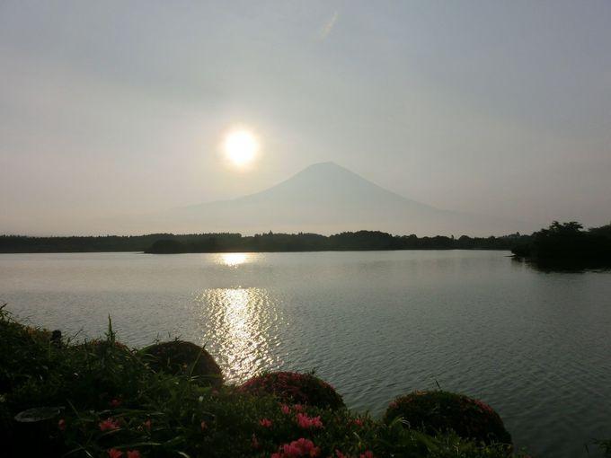 富士山自慢の1枚にチャレンジ!