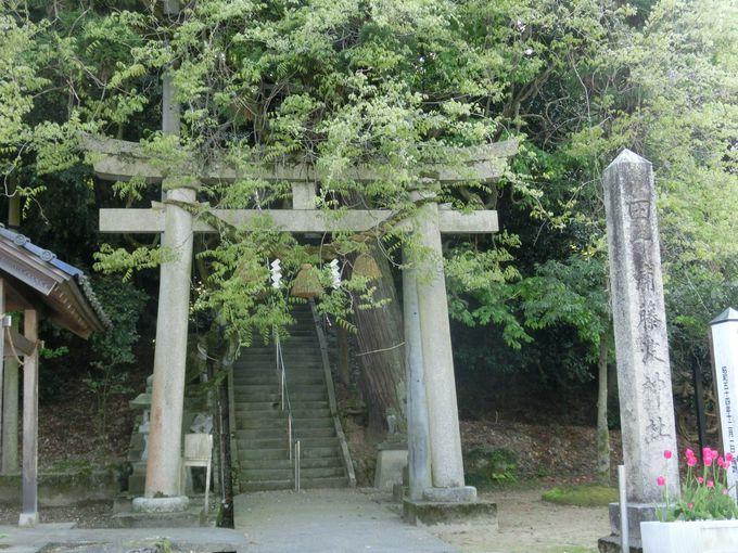 4.田子浦藤波神社/氷見市