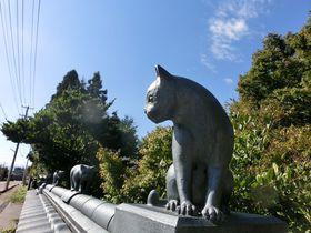 瓦の猫が歩く街?新潟阿賀野「やすだ瓦ロード」
