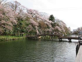 これが水濠だ!富山「高岡城跡」で水濠公園の魅力に浸る
