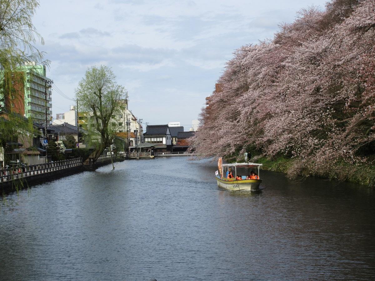 水濠遊覧船も運行!「日本さくら名所100選」で花見の宴