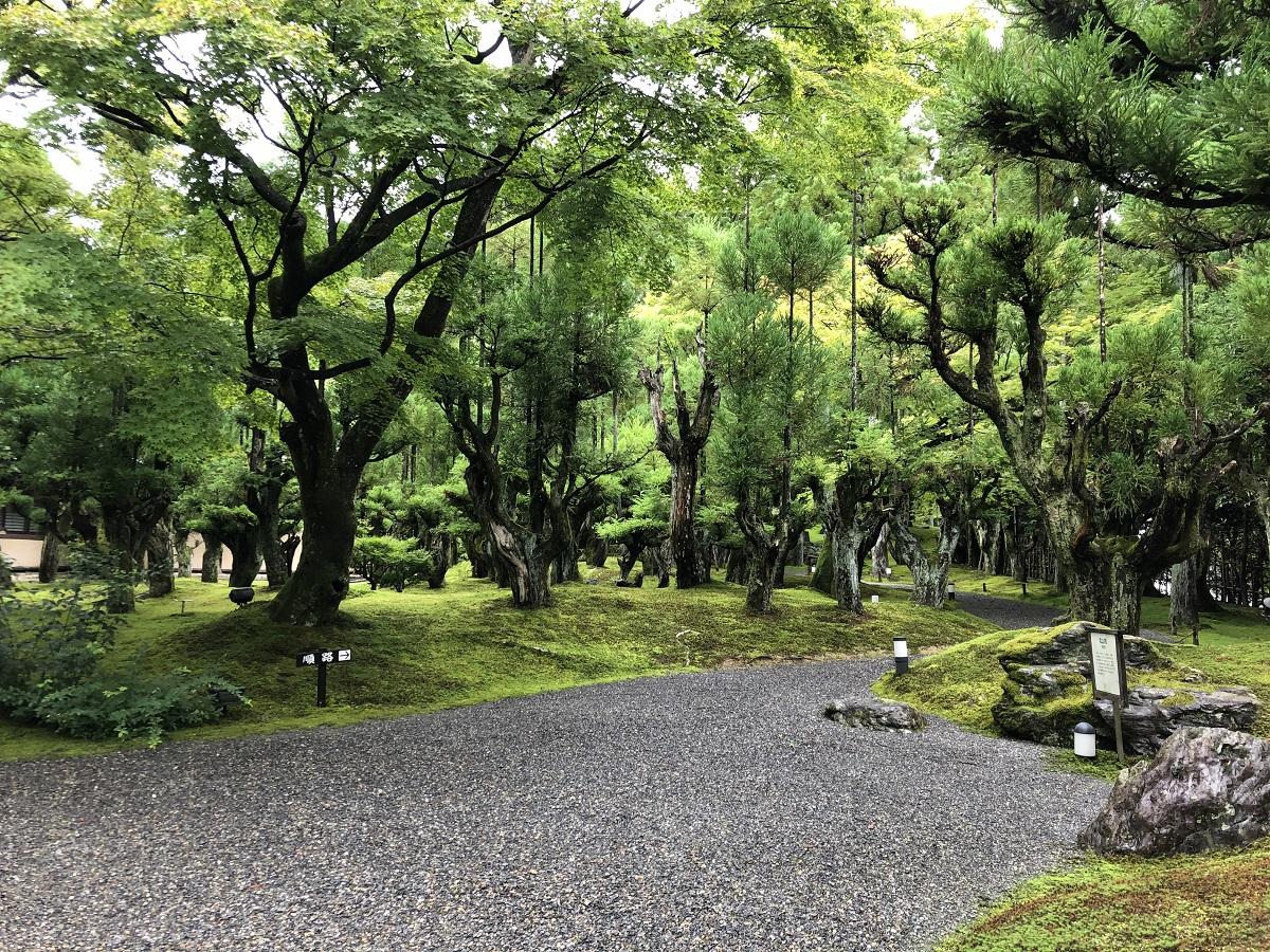 京の風情を満喫して歩く!「しょうざん庭園」