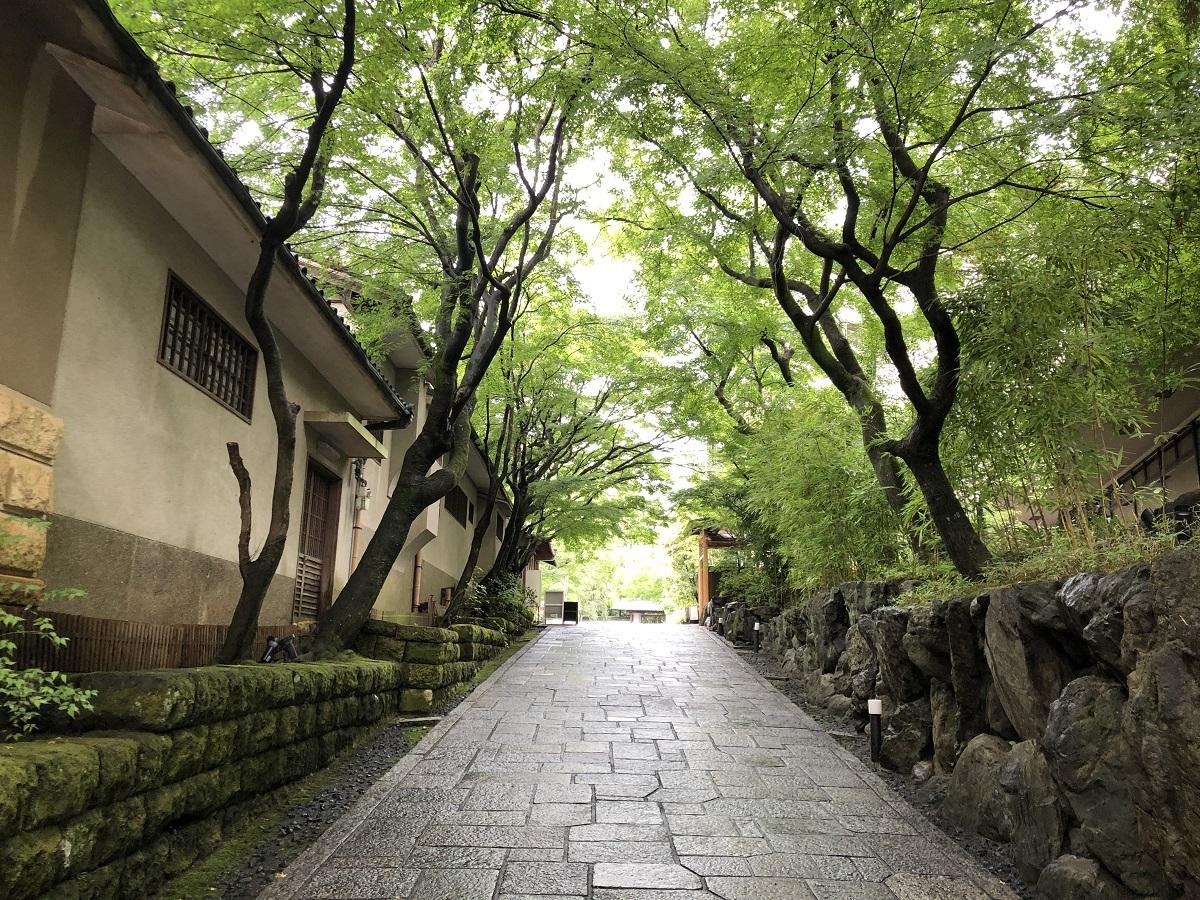 「南庭」は京都の隠れ散歩道