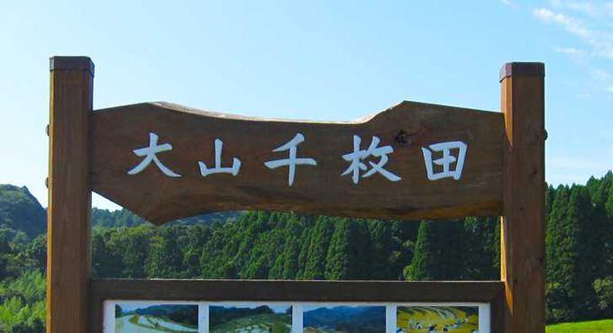 千葉県で唯一、「日本の棚田100選」に選ばれた大山千枚田