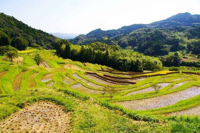 特別天然記念物「鯛の浦」と日蓮ゆかりの「誕生寺」
