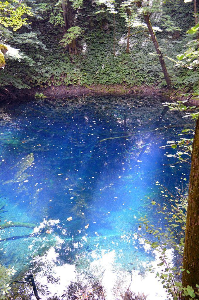自然の神秘! コバルトブルーの青池