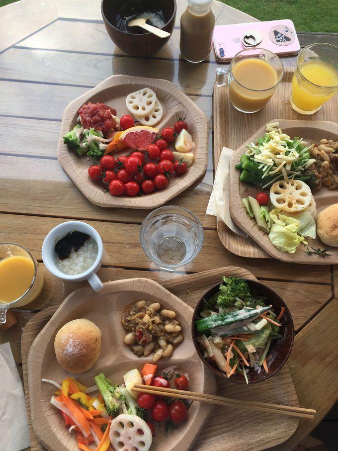 朝食は野菜の鮮度に驚き!