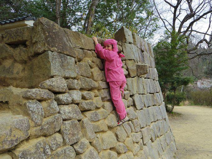 忍者の里「甲賀」で大人も子供も楽しく忍者体験