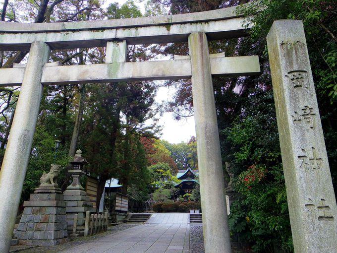 岡崎神社周辺は素敵な散策エリア