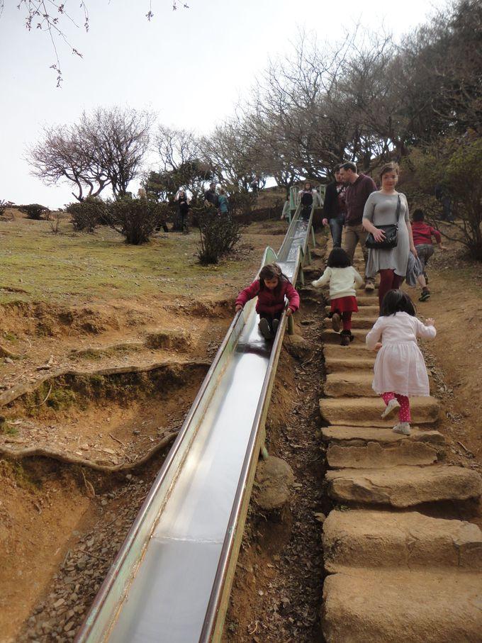 外国人観光客に大人気!嵐山モンキーパーク!