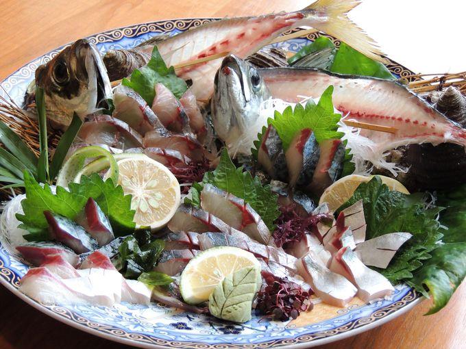 ブランド魚の元祖、関サバを求めて佐賀関へ