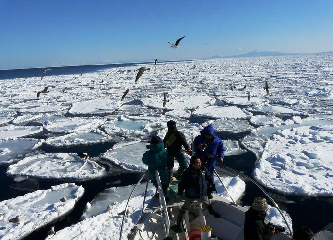 これぞ冬の絶景!ダイナミックすぎる白銀の流氷原「オホーツクの流氷」(北海道)