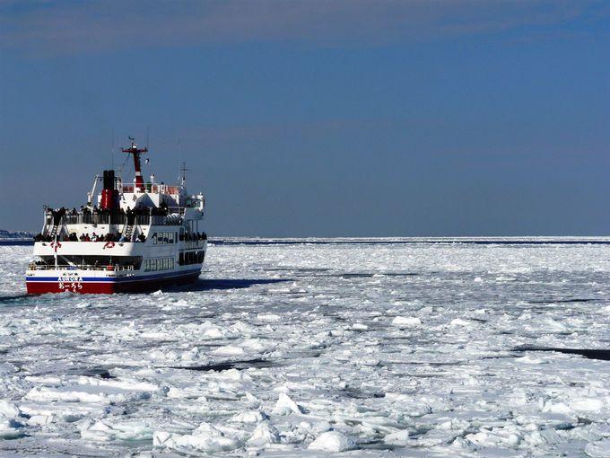 流氷観光の定番「流氷砕氷船 おーろら」に乗ろう!