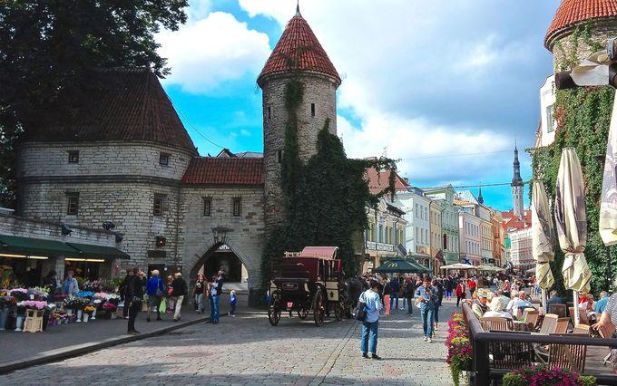まるでおとぎの国!中世の面影が残るバルト海の真珠「タリン」(エストニア)