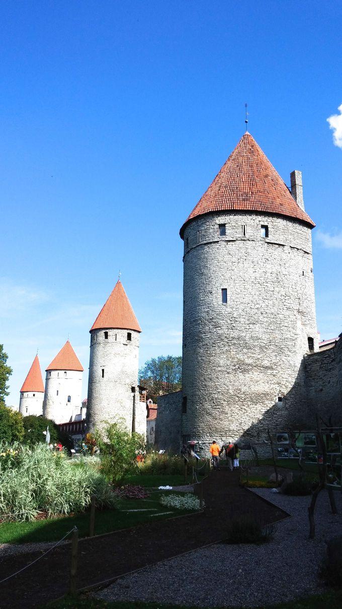 タリンの象徴、城壁ととんがり屋根の塔を眺めるなら「塔の広場」へ