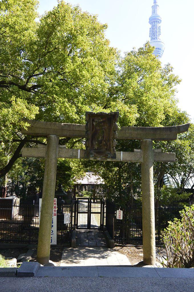 隅田川七福神巡りのランドマークとなった「三囲神社」の大鳥居