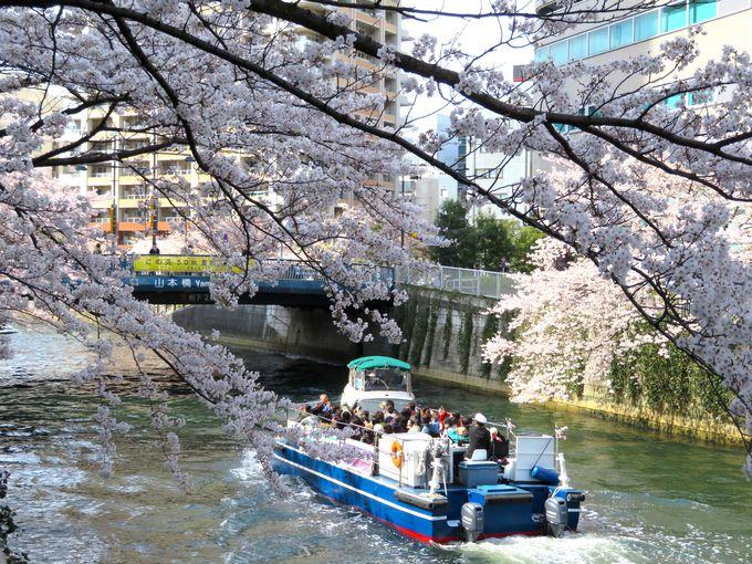 水門やいくつもの橋をくぐってお花見スポットを巡る
