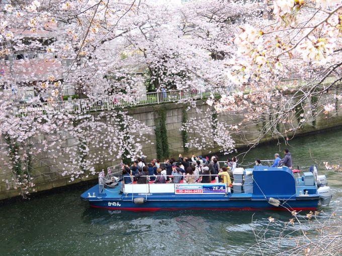 花吹雪が舞う川面を船で進むのも醍醐味
