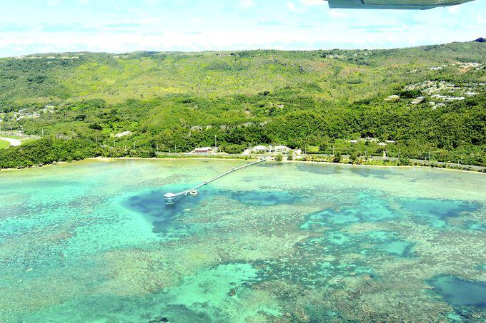 海の青さが鮮烈! 恋人岬やボムホールを海鳥の目線で眺める。