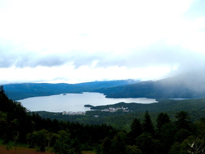 北海道でも阿寒湖だけ!神秘の湖で育つレイクロブスターを食べよう
