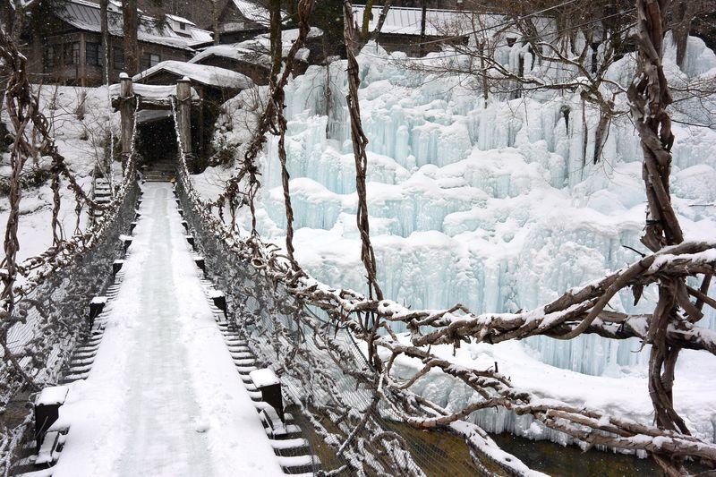 氷瀑や雪見露天、かまくら祭りで冬を満喫!湯西川温泉「本家伴久」