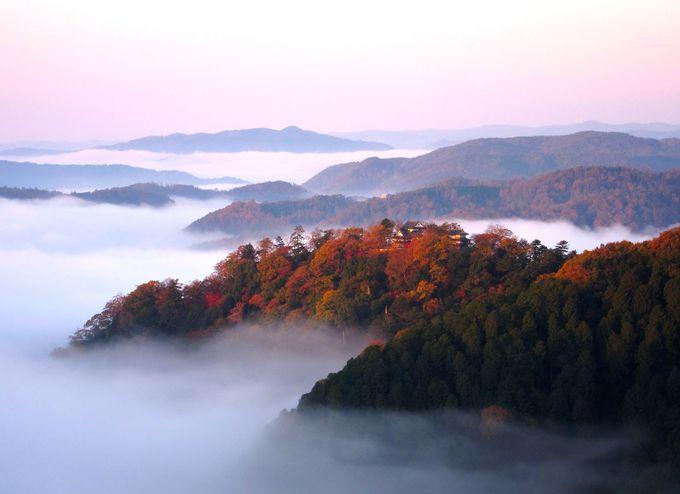 雲海に浮かぶ天空の山城「備中松山城展望台」(岡山)