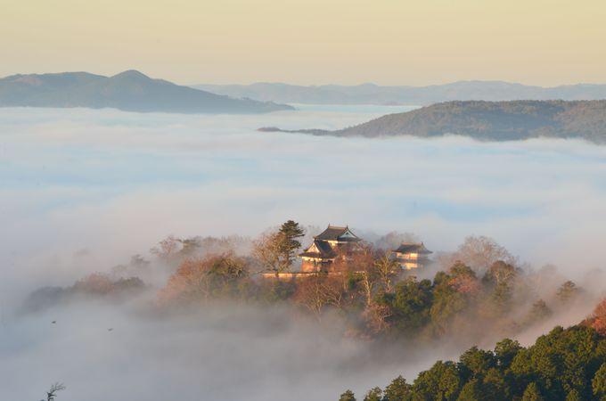 雲海に浮かぶ「天空の山城」