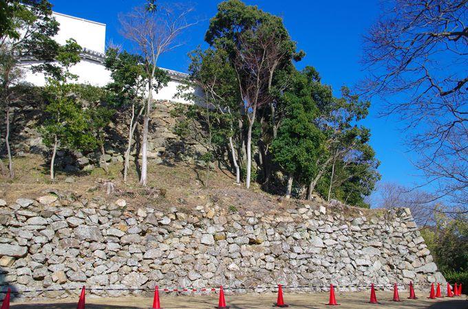 秀吉時代の面影が残る石垣
