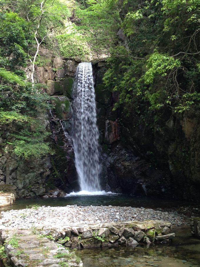 10.鼓ヶ滝公園