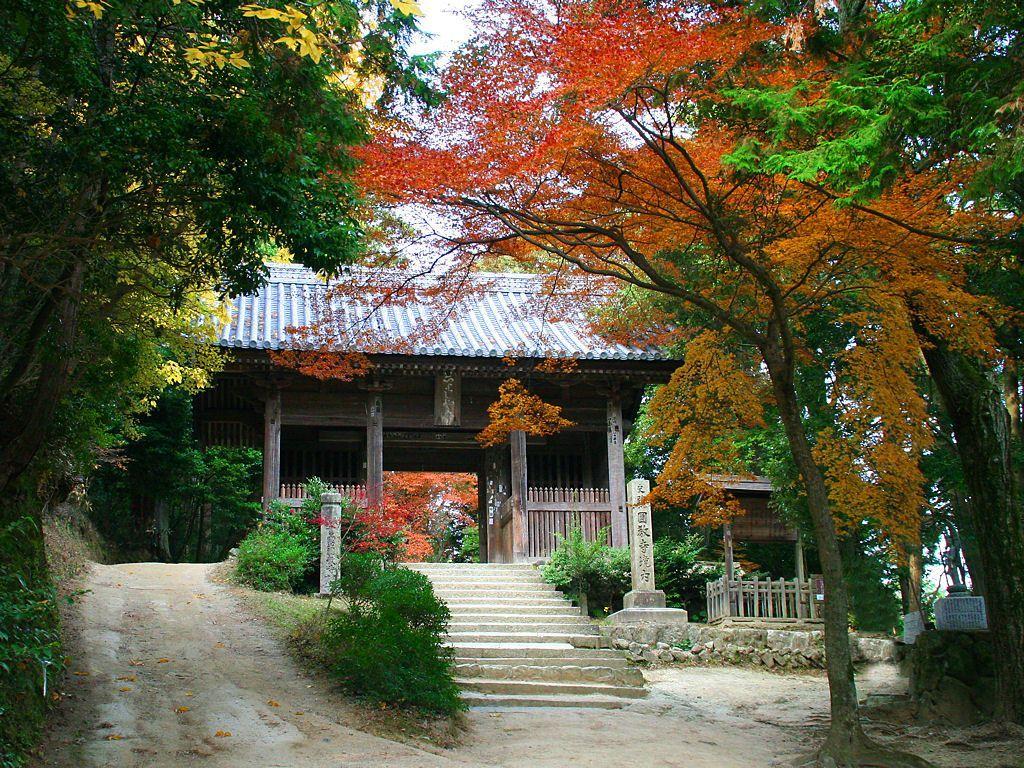 書写山円教寺の参道を照らす紅葉