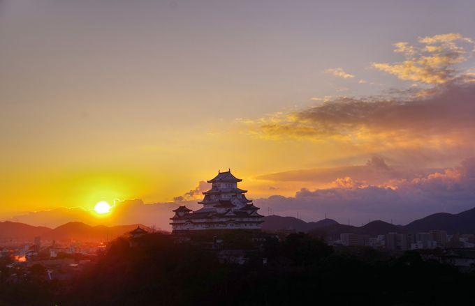 その4・昇る朝日と姫路城の共演
