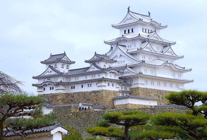 2.美しくなった白鷺!名城の絶対的エース「姫路城」