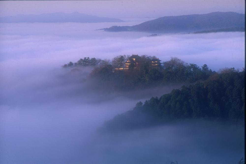 備中松山城展望台へ雲海に浮かぶ天空の山城を見に行こう!